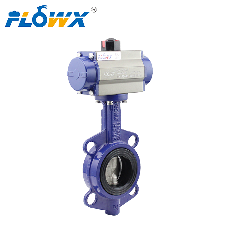 Butterfly Valve Singapore Supplier