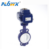 Butterfly Valve Manufacturers in Italy